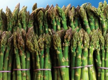 Customs Peruvian Asparagus