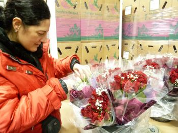 Fresh Flower Warehousing, Order Fulfillment