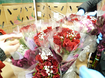 CrowleyFresh-ValentinesDayRoses
